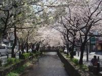 Takasegawa1