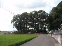 Takamatsujou5